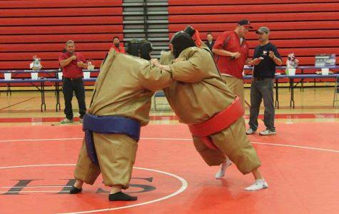 Sumo Smash