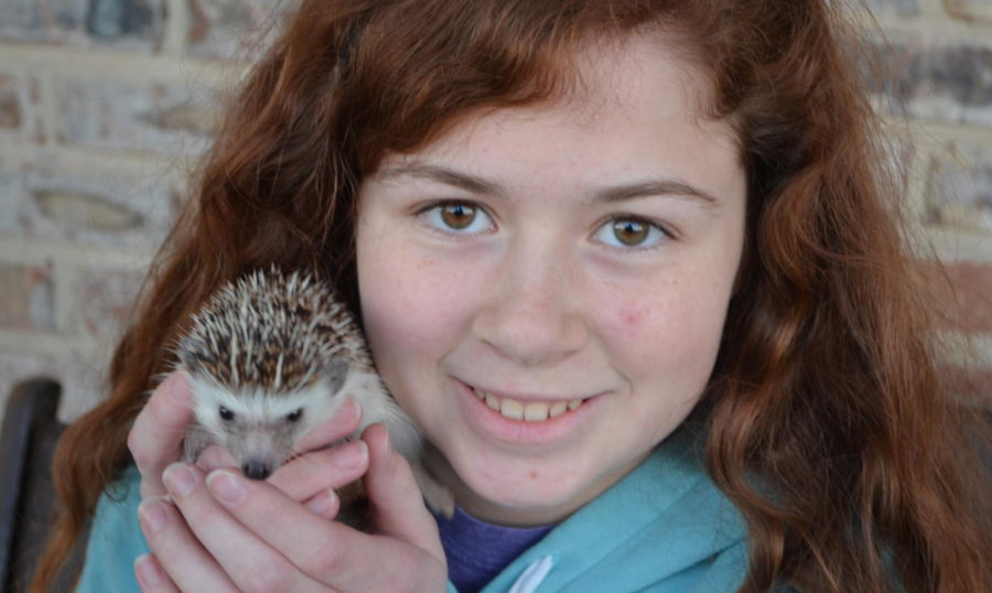 Kylie Hale has had Thistle, her hedgehog, for about two and a half years and while it's difficult to care for him sometimes, she enjoys looking back at the funny moments she's had with him.