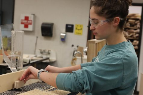 "Senior Maggie Merz works on a project in her ""woods"" class."