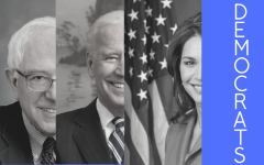 The 2020 presidential election has been somewhat hectic with originally 29 Democratic candidates running. For comparison, six Democrats ran for president in 2016. The Democrats are now down to three candidates, two of them fighting head-to-head for the nomination.