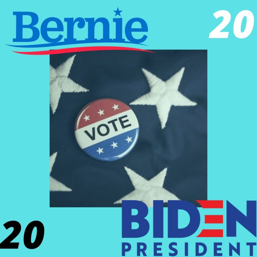 Bernie+Sanders+and+Joe+Biden+are+two+Democratic+candidates+who+have+received+the+most+momentum+behind+their+campaigns.