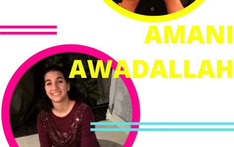 Amani Awadallah