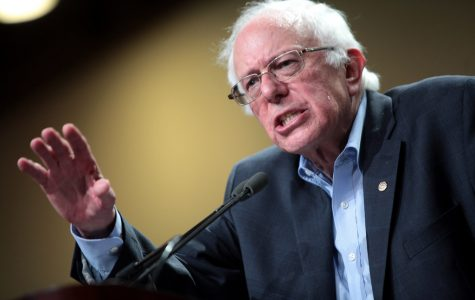 Bernie Sanders has been advocating for people of color since 1962, when he attended a desegregation rally against the University of Chicago.