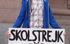 """Instead of """"taking it to the streets,"""" climate activist Greta Thunberg asks that everyone """"take it online,"""" and stay informed during the virus outbreak."""