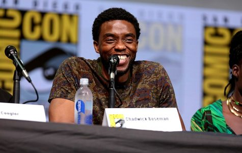 Chadwick Boseman speaks at the the 2017 San Diego Comic Con.