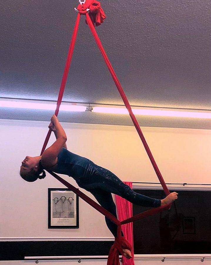 Elle Pruss & Aerial Silks
