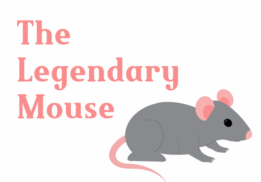"""I wish the mouse had been around for Cinderella, we could have incorporated it,"" Mrs. Gehrke said."