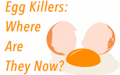 The egg killers may have faded into obscurity, but their crimes remain a terrible memory.