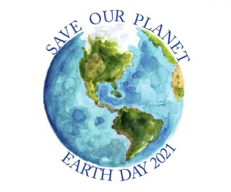 Sustainable Switches To Make For Earth Day
