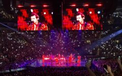 Harry Styles performs She in front of 19,000 people at Enterprise Center.